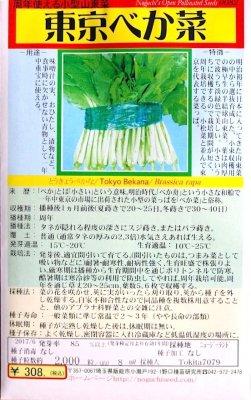 野口のタネ|東京べか菜|周年使える小型山東菜
