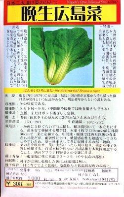 野口のタネ|晩生広島菜|日本三大漬菜の一つ