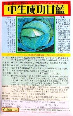 野口のタネ|中生成功甘藍|春・夏・秋の三季蒔キャベツ