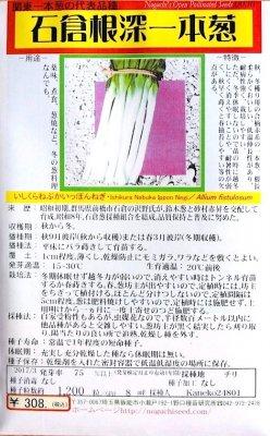野口のタネ|石倉根深一本葱|関東一本葱の代表品種