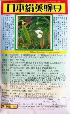 野口のタネ|日本絹莢豌豆|白花つるあり伝統種