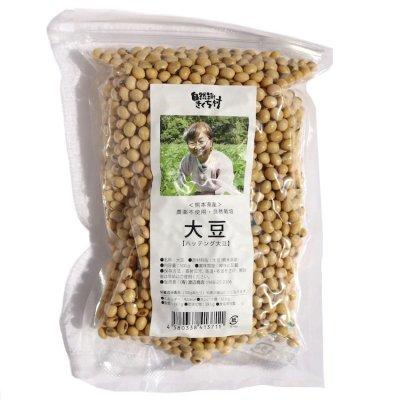 無農薬・自然栽培大豆『八天狗』|500g|熊本県|自然派きくち村