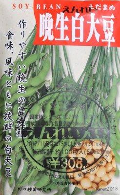 野口のタネ|えんれい大豆|中生系ダイズの代表