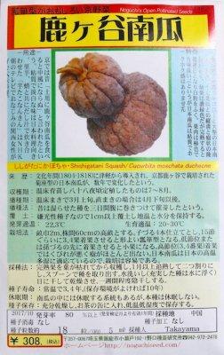 野口のタネ|鹿ケ谷かぼちゃ| 日本カボチャ。晩生ヒョウタン型。