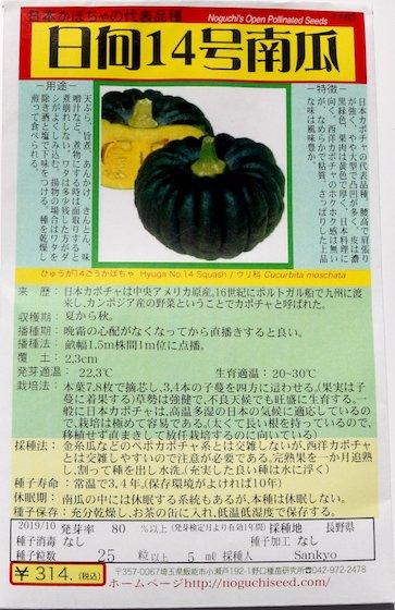 野口のタネ|日向14号南瓜|日本カボチャの代表
