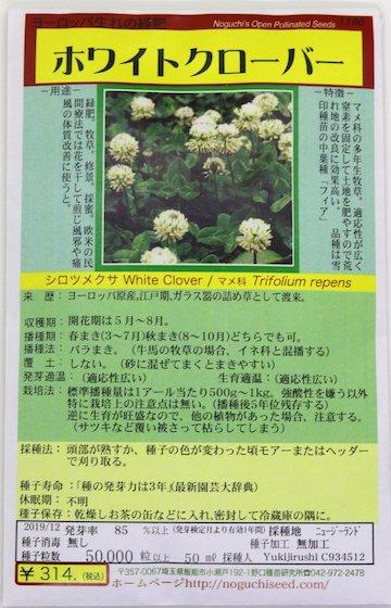 野口のタネ|ホワイトクローバー|ヨーロッパ生れの緑肥