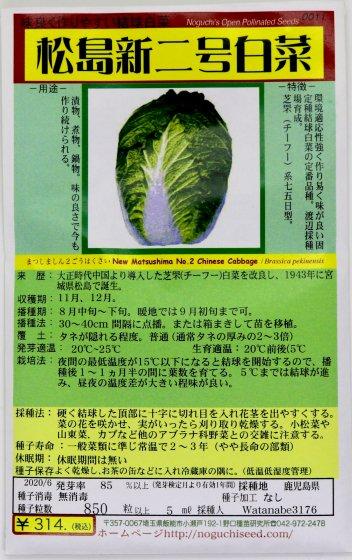 野口のタネ|松島新二号白菜|75日型。つくりやすく味が良い