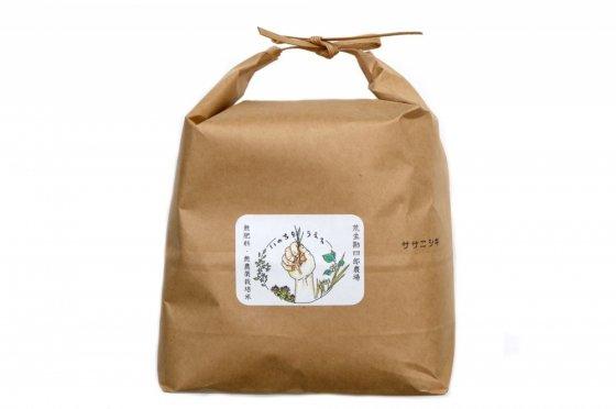 ササニシキ【山形産】|玄米|5kg|無肥料・無農薬栽培米|荒生勘四郎農場