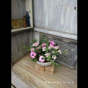 【寄せ植え381 やわらかなピンク色の寄せ植え】<br>春のはじまりです♪