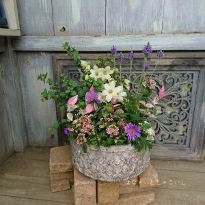 【寄せ植え382 白いクレマチスの寄せ植え】<br>春のはじまりに♪