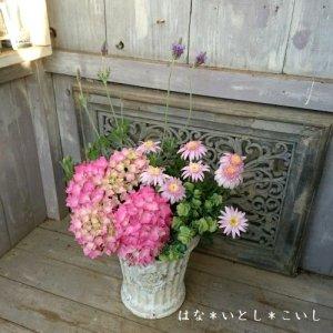 【寄せ植え596  母の日の贈り物に♪華やか☆ハイドランジアの寄せ植え】
