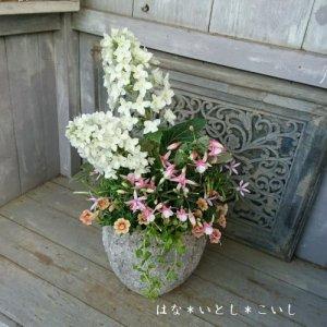 【寄せ植え611  母の日の贈り物に♪カシワバアジサイの寄せ植え】