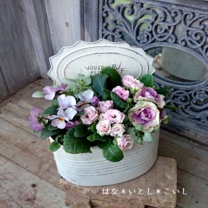 【寄せ植え308  ハボタンの寄せ植え】<br>淡いピンクのジュリアンと☆春まで長く楽しめます♪