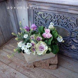 【寄せ植え316  ハボタンと ジュリアンの寄せ植え】<br>かわいいホワイト&ピンク☆春まで長く楽しめます♪