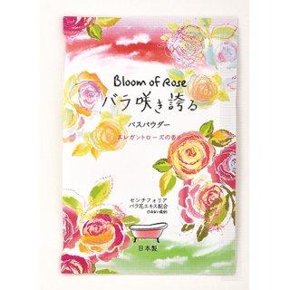 バラ咲き誇る入浴料 12P