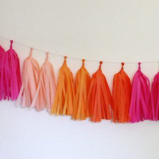 Tissue Paper Tassel Garland Kit (Bright)