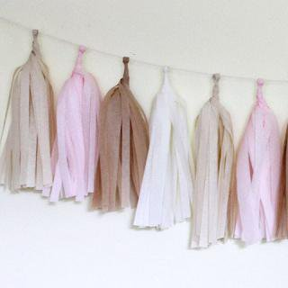 Tissue Paper Tassel Garland Kit (Blushing)