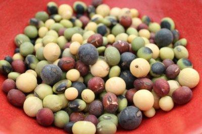 めぶき農房の大豆ミックス