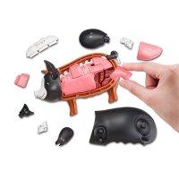 【遊んで学べる立体パズル】一頭買い!!黒豚パズル