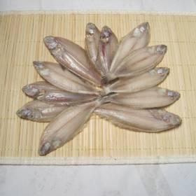 ヤナギムシカレイ(笹カレイ)12枚