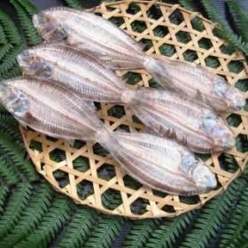 カワラカレイ 6尾