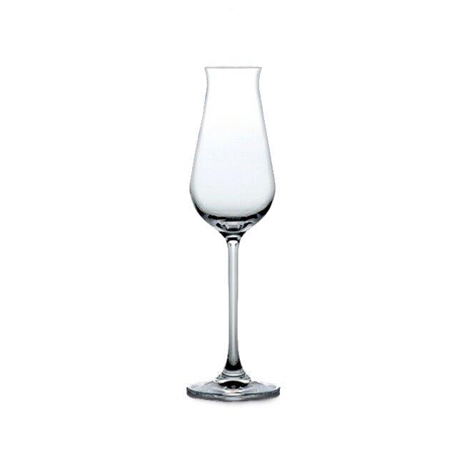 東洋佐々木ガラス デザイヤー(DESIRE) シャンパン 240ml (24個セット) (RN-13254CS-1ct)