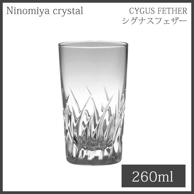 二ノ宮クリスタル CYGNUS FEATHER(シグナスフェザー) 8TB 260ml (2個セット)