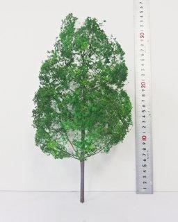 一般木【特大:30cm】