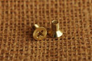 ネジ 真鍮無垢 4x8mm