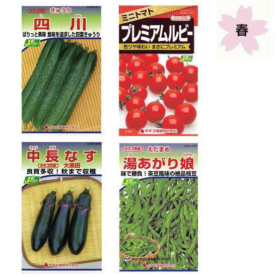春に植えたい野菜栽培セット