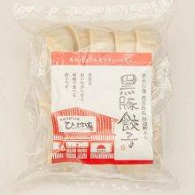 かごしま黒豚餃子 20個(5個×4パック)タレ付き