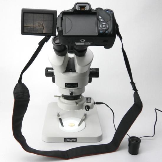 顕微鏡屋セレクト Canon EFマウント一眼レフカメラ(EOSシリーズ)用顕微鏡アダプタレンズ ALC-CEF【画像11】