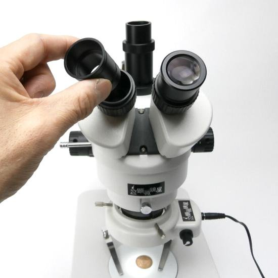 顕微鏡屋セレクト Canon EFマウント一眼レフカメラ(EOSシリーズ)用顕微鏡アダプタレンズ ALC-CEF【画像8】