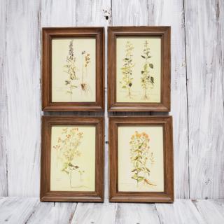 fleur art frame / S