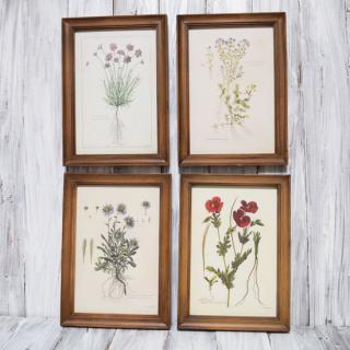 fleur art frame / M