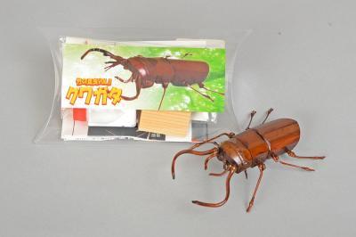 昆虫組立キット【クワガタ】