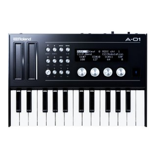 Roland Boutique A-01K【箱ボロ品処分!1台限りの大特価!】<img class='new_mark_img2' src='//img.shop-pro.jp/img/new/icons41.gif' style='border:none;display:inline;margin:0px;padding:0px;width:auto;' />