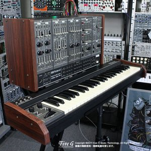 Roland SYSTEM-100M D SET + 181 Keyboard