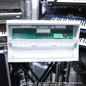 Tiptop Audio | Mantis Green【中古】<img class='new_mark_img2' src='https://img.shop-pro.jp/img/new/icons7.gif' style='border:none;display:inline;margin:0px;padding:0px;width:auto;' />