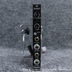 Erica Synths   Pico Quant【中古】