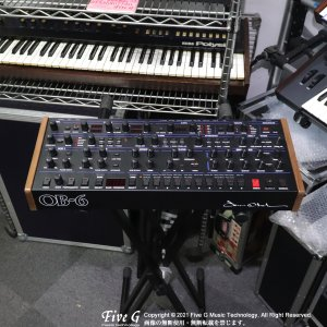 Dave Smith Instruments | OB-6 Module【中古】