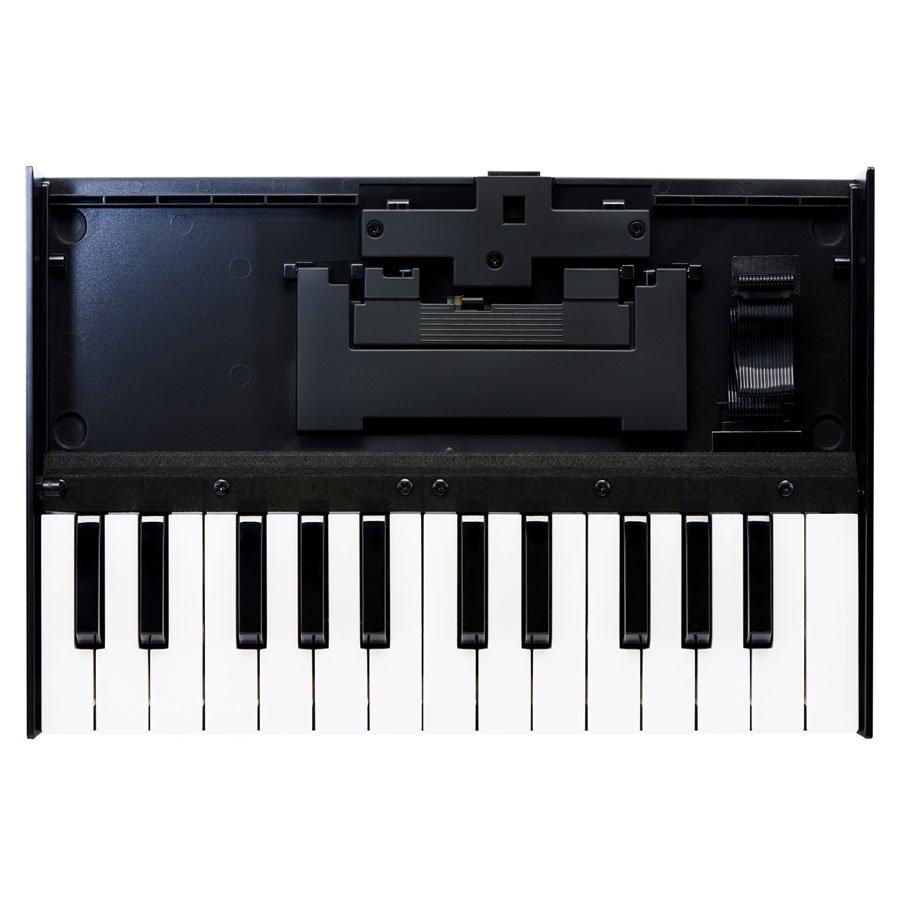 K-25m