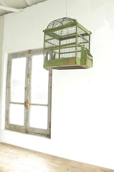 Bird cage B 152000482