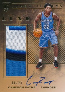 2015-16 PANINI LUXE RC Patch Auto Cameron Payne 【25枚限定】Rookie Star RS67様