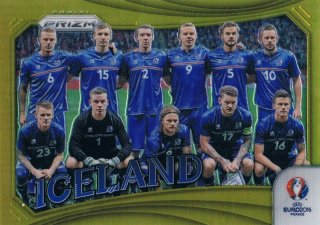 2016 PANINI EURO PRIZM Signatures Team Photos Gold Prizms Iceland 【10枚限定】 ミント渋谷店 レイリー様