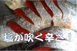 超辛口紅鮭(10切)