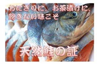 北海道産秋鮭(10切)