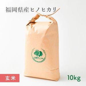 【常温】杏里ファームのヒノヒカリ玄米10キロ