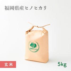 【常温】杏里ファームのヒノヒカリ玄米5キロ