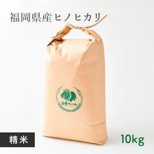 【常温】杏里ファームのヒノヒカリ精米10キロ